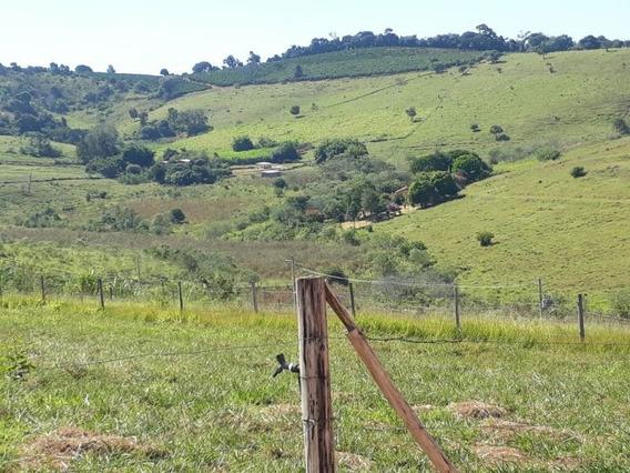 Bela Chácara Em Baependi Sul De Minas , Com 1000 M2 , Condomínio Recanto Da Flora - 239