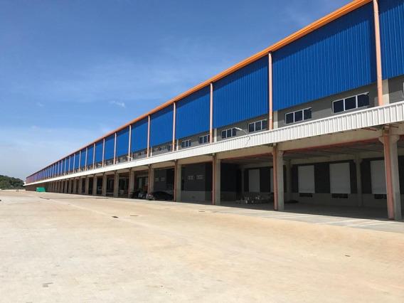 Área Em Vila Nova Bonsucesso, Guarulhos/sp De 2839m² Para Locação R$ 59.619,00/mes - Ar178734