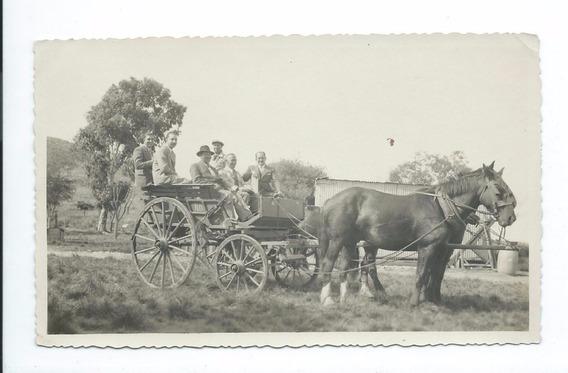 Foto Antigua Carreta Sulky 1941