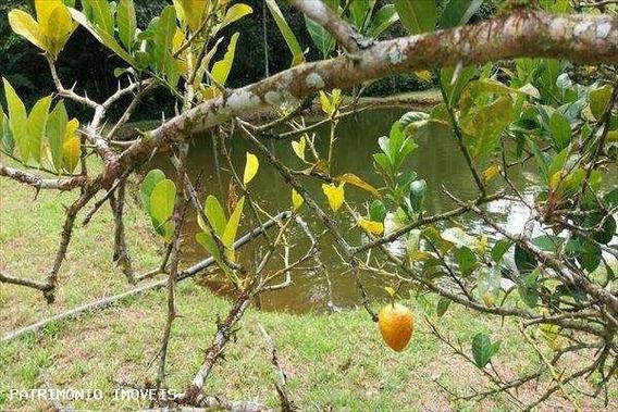 Sítio Para Venda Em Ubatuba, Jardim Marafunda - 853