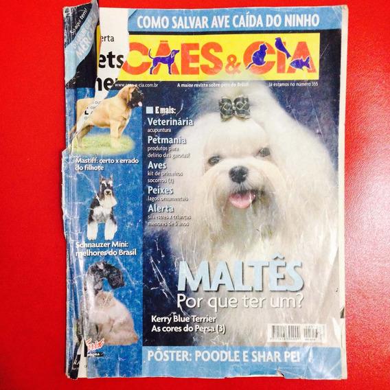 Cães E Cia - Maltês