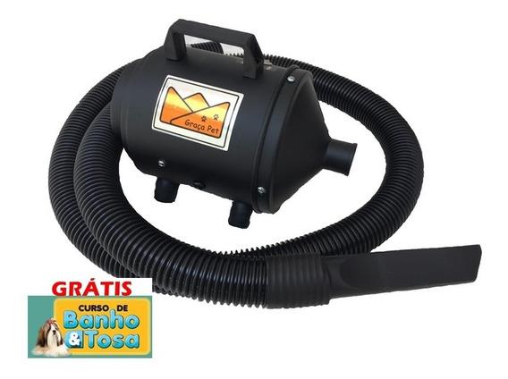 Soprador Secador Petshop Motor Electrolux 2 Vel Banho Tosa