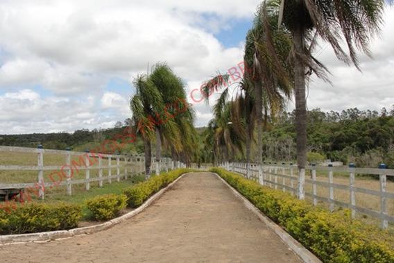 Venda - Fazenda - Área Rural De Itapetininga - Itapetininga - Sp - D4465