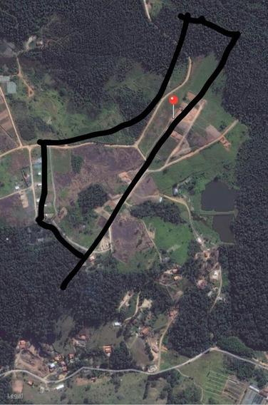 Terreno De 1000m² Na Planta Direto Com Propietário