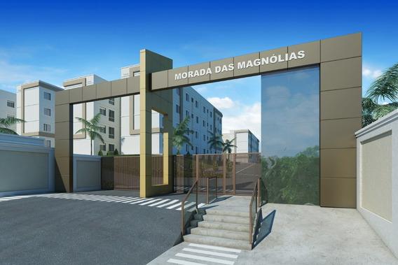 Lançamento Morada Das Magnólias