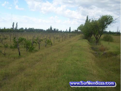 Imagen 1 de 12 de Permuto Lindo Terreno-campo 1,63ha Cuotas Fijas En Pesos