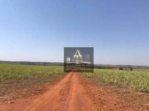 Imagem 1 de 18 de Excelente Fazenda Para Venda Em Nipoã - Sp - Confira!!!! - Fa0056