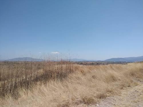 300 Hectáreas De Terreno Cerca De Jardines De México