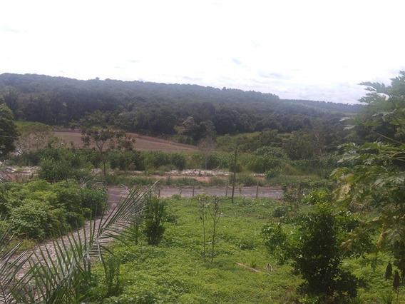 Chácara Para Comprar No Zona Rural Em São Gonçalo Do Pará/mg - 4435