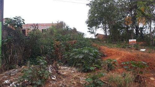 Imagem 1 de 5 de Terreno À Venda, 250 M² Por R$ 100.000,00 - Parque Residencial Bambi - Guarulhos/sp - Te0125