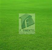 Fincas En Oviedo Prov. Pedernales Rd$5mil X Tareas