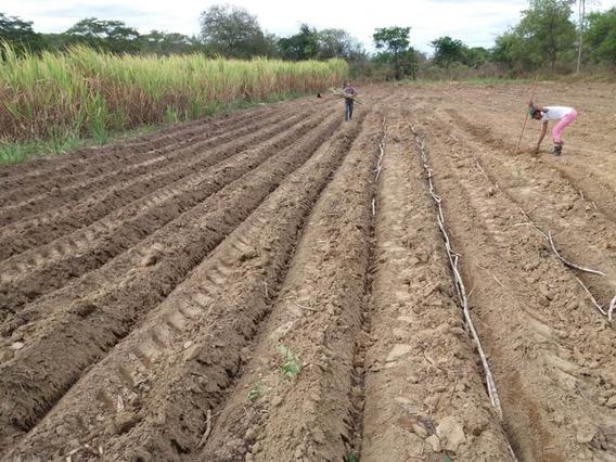 Fazenda Para Venda No Zona Rural Em Coração De Jessus - Mg - Faz01