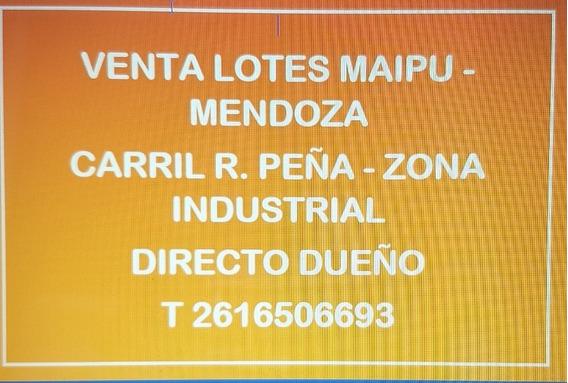 Vendo Lotes Zona Industrial Maipu Carril Rodriguez Peña Mdza