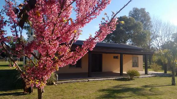 Hermosa Casa Quinta En Cañuelas 3.300 M2