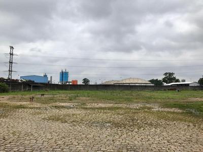 Terreno Comercial À Venda, Parque Novo Mundo, São Paulo. - Te0067