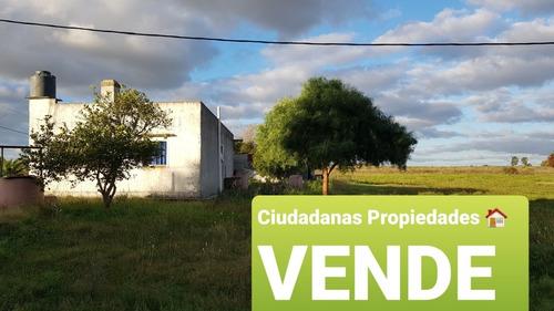 Ciudadanas Propiedades Vende Campo Con Vivienda  En Sauce