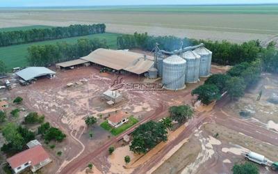 Fazenda Em Santa Filomena Piauí Com 9.000 Hectares