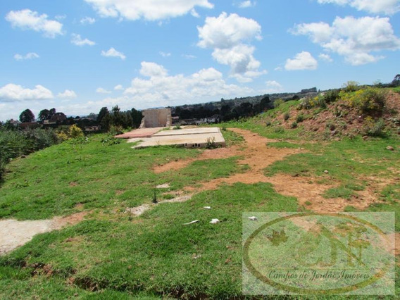 Terreno Para Venda Em Campos Do Jordão, Alto Da Vila Inglesa - 124