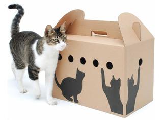 Transportadora De Cartón Plegable Para Gatos Y Perros Chicos