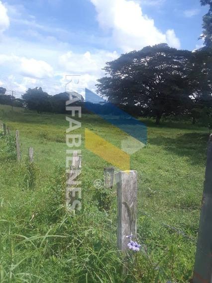 Haciendas - Fincas En Venta, Mijagual Barinas