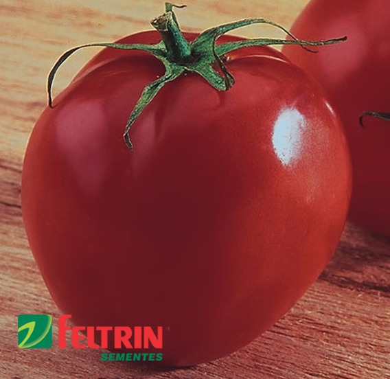 Sementes De Tomate Santa Clara 5800 - Econômica - Feltrin