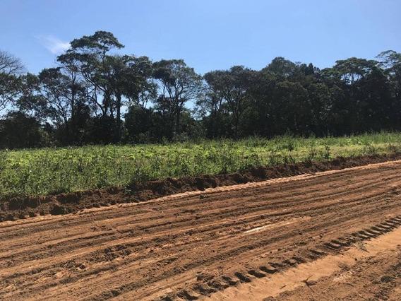 Terrenos 1200 M2 Para Construir Sua Casa De Campo 35 Mil J