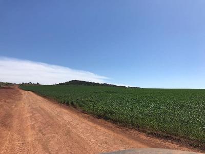 Fazenda Em Zona Rural, São João D