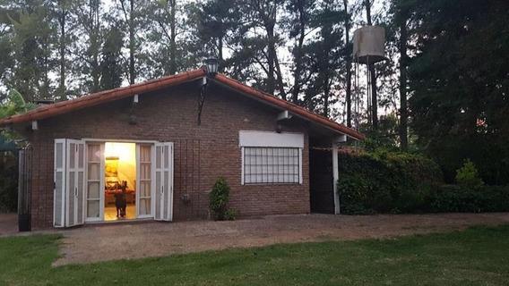 Alquiler Diciembre 2019 - Quinta - El Remanso 1 Hectárea Temporario