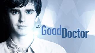 The Good Doctor Serie Completa Digital