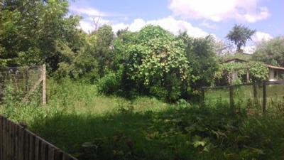 Terreno Em Centro - Vr20638