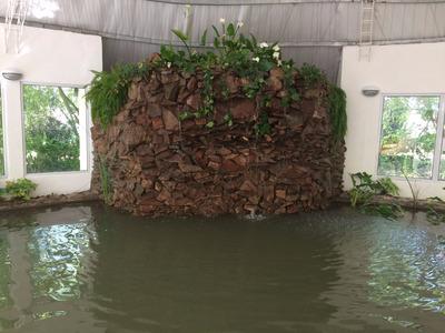 Las Grutas Terreno Con Biosfera Y Galpon