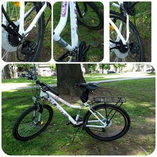 Bicicleta Olmos Safari R26