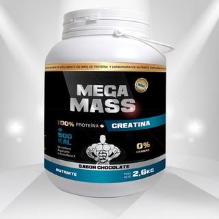 Mega Mass 100% Proteina+500kcal+creatina Nutrirte