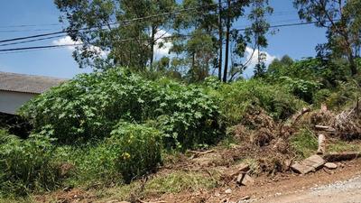 Terreno Embú Das Artes - Chácara 3564m2 - Próximo Ao Centro