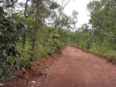 Fazenda Cocal - Area Bruta Em Rio Sono - Tocantins