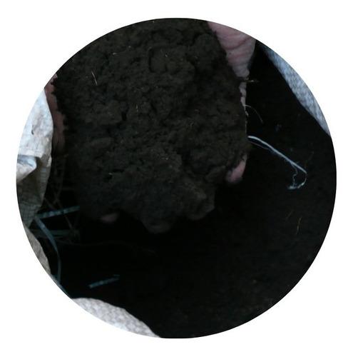Tierra Negra Abonada Y Mejorada  X 12 Kg