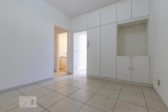 Apartamento Para Aluguel - Botafogo, 1 Quarto, 30 - 893018668