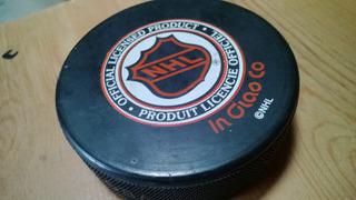 Disco Puk Hockey Mighty Ducks Slokavia