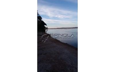 Fazenda De 1.150 Alqueires Em Santana Do Araguaia Pa