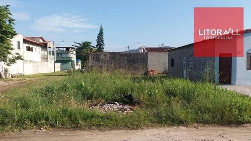 Imagem 1 de 4 de Terreno Residencial À Venda, Suarão, Itanhaém. - Te0215