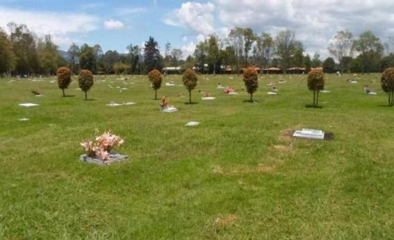Lote Cementerio Triple