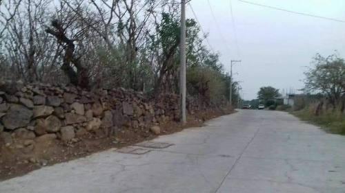 Gran Terreno En Venta En Morelos