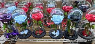 Rosas Eternas Colombianas. Envío Gratis!