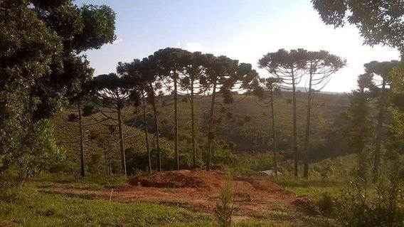 Sítio São Tomé 30.000 M2 - 426