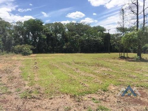 Terreno À Venda, 7000 M² Por R$ 790.000,00 - Gleba Fazenda Palhano - Londrina/pr - Te0507