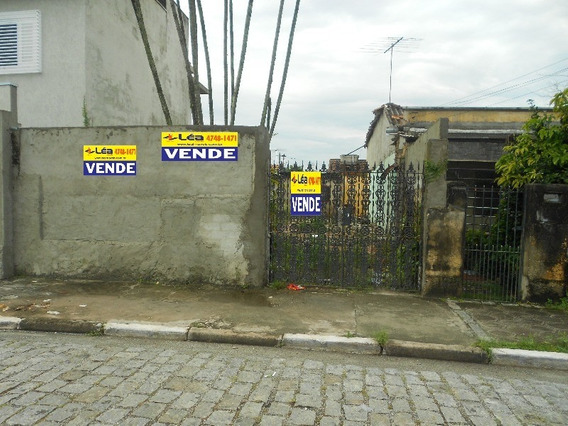 Terreno - Te00002 - 4585032