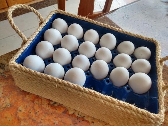 Porta Ovos, Organizador Decorativo Para 24 Ovos De Sisal