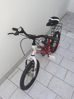 Bicicleta Dolphin