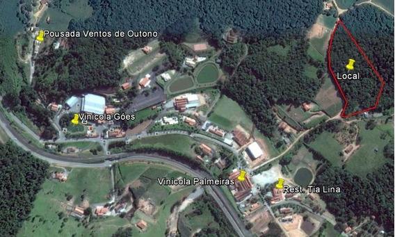 Area De 17.000 M² Próximo A Estrada Do Vinho - São Roque