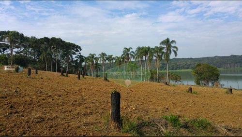 Imagem 1 de 30 de Terreno À Venda, 30000 M² Por R$ 3.698.000,00 - Cipó Do Meio - São Paulo/sp - Te0059
